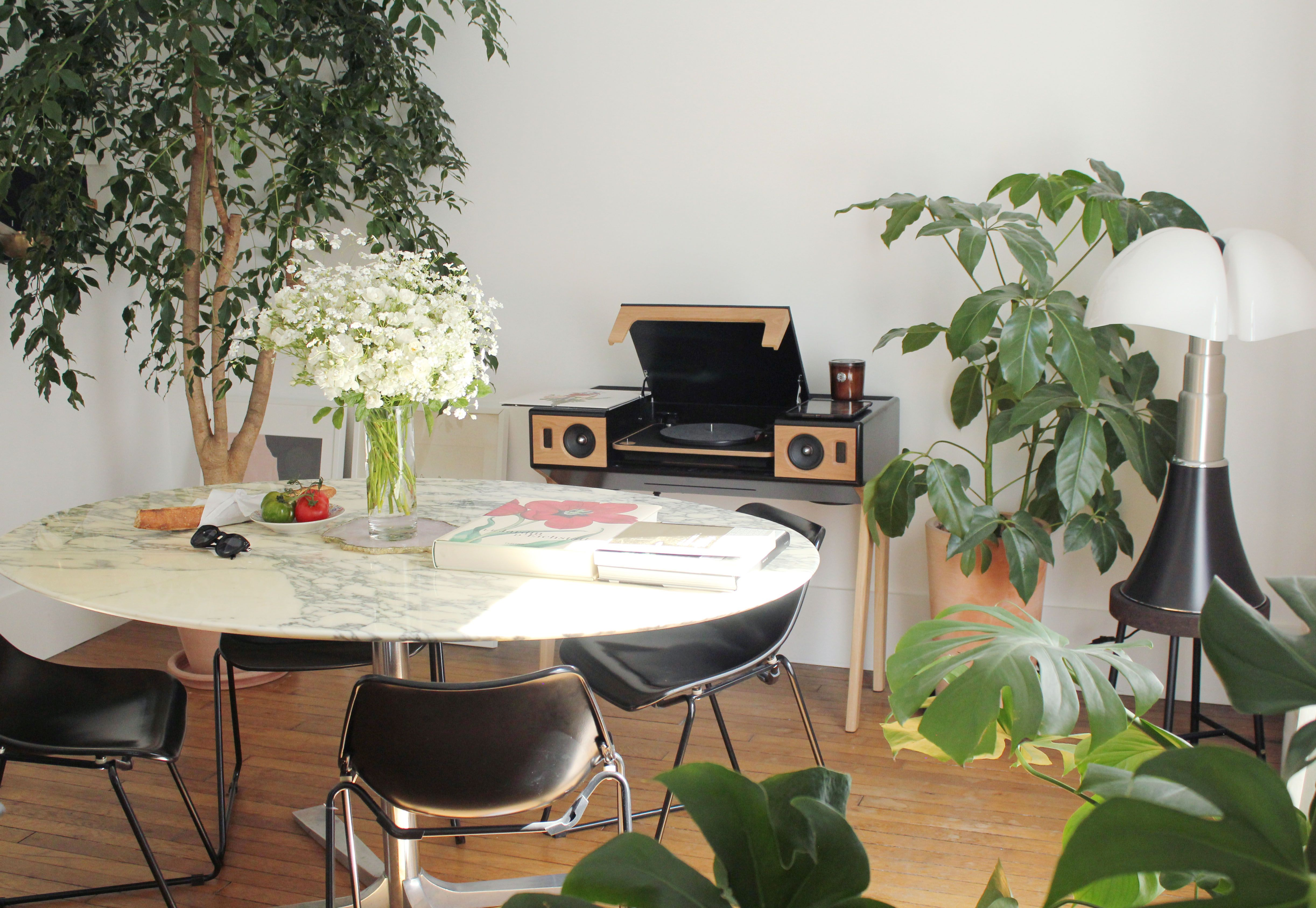 Selency Dinning Room Plants Vinyl Vintage Knoll