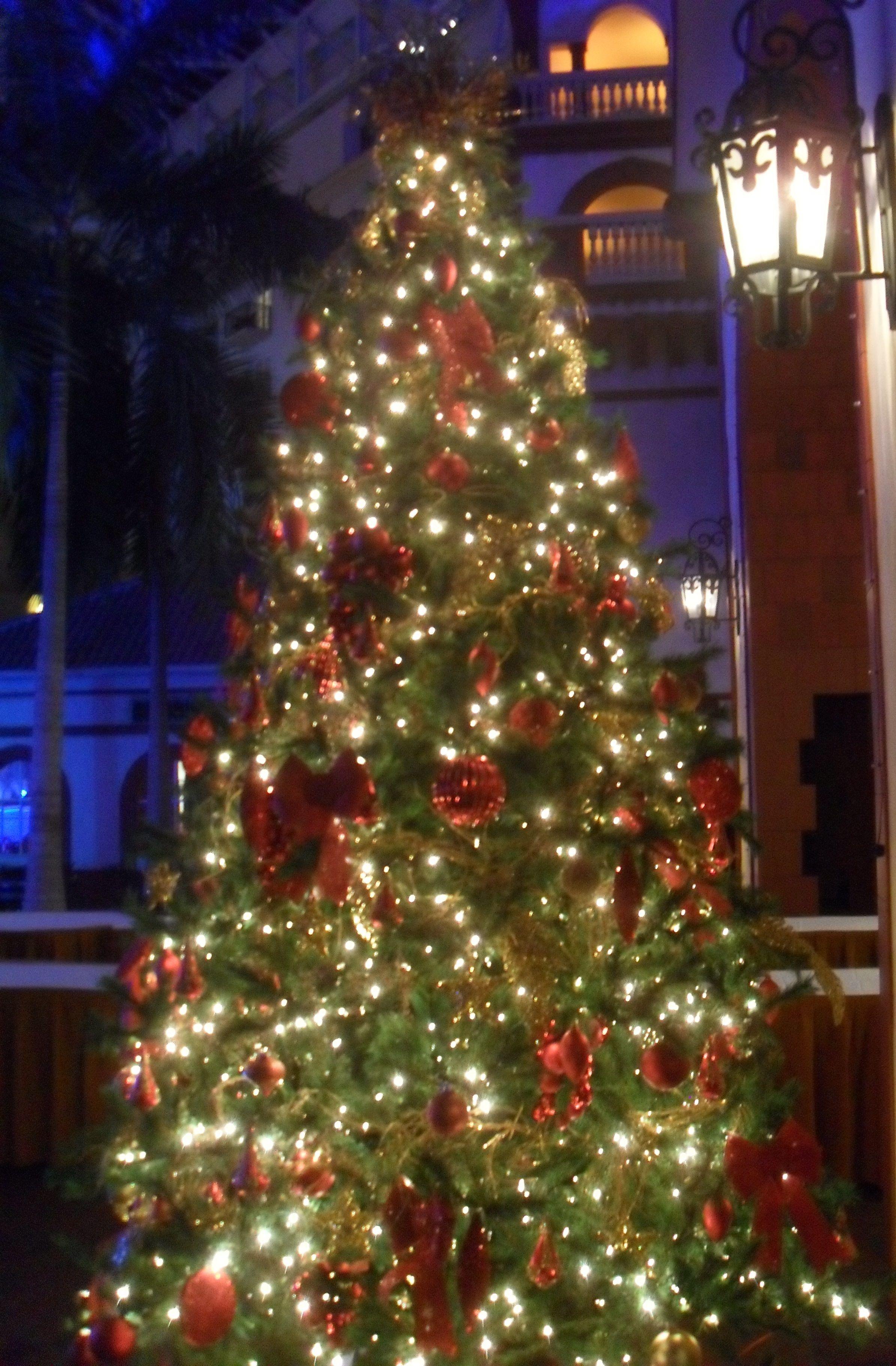 Nett Draht Weihnachtsbäume Im Freien Galerie - Elektrische ...