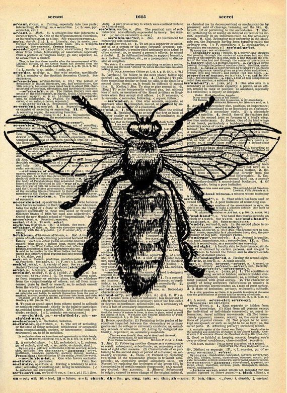 Bee Print - Vintage Dictionary Art Print - Natural History Insect Art - Upcycled Altered Art Book - Rustic Home Decor Print