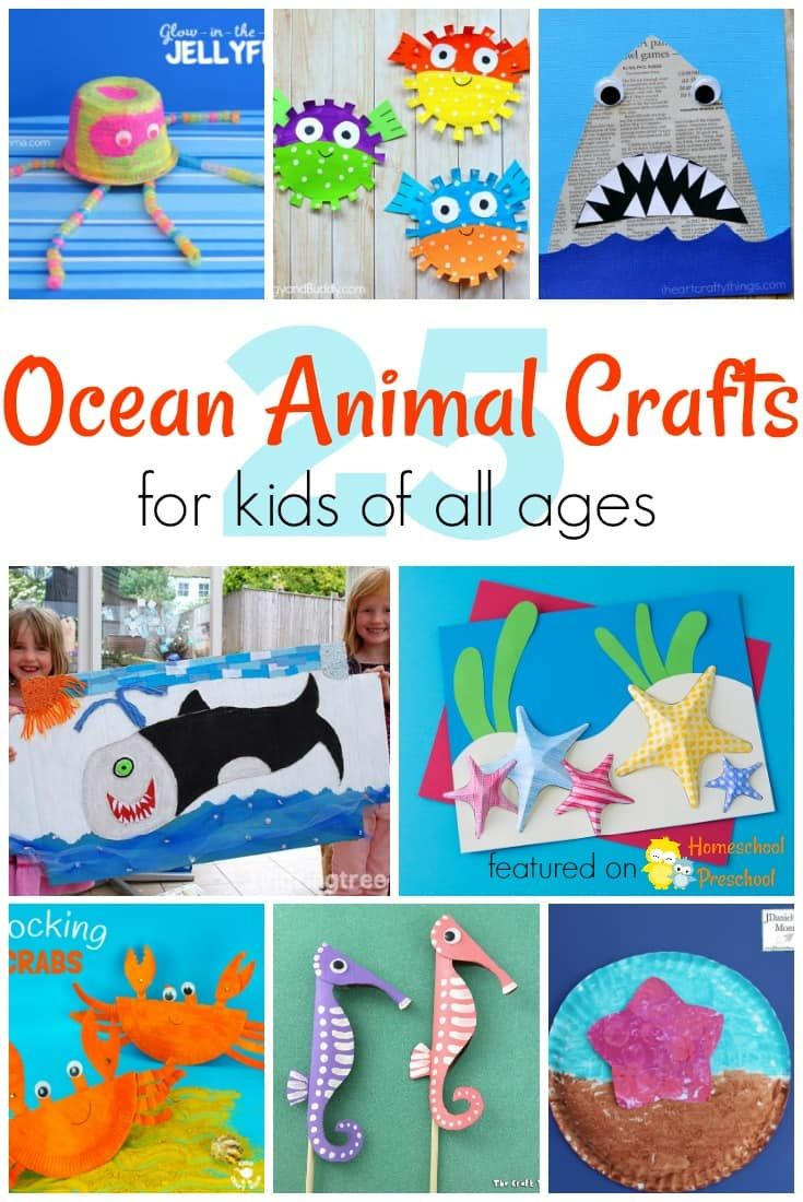 25 Adorable Ocean Animals Crafts for Kids of All Ages | Animal ...