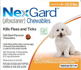 Pin On Protect Your Pet From Fleas