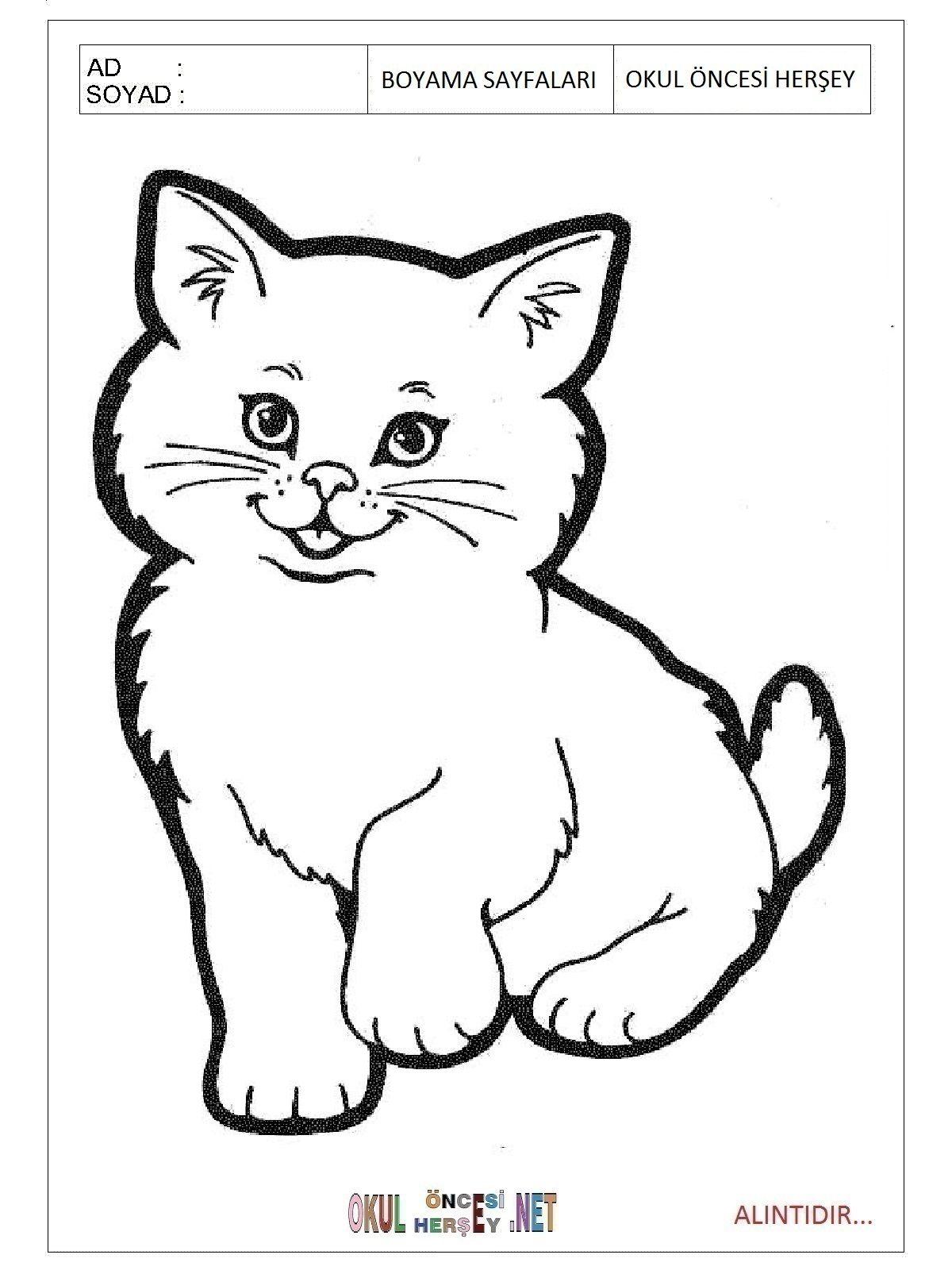 Boyamak Için Kedi Resmi Ile Ilgili Görsel Sonucu Kedi