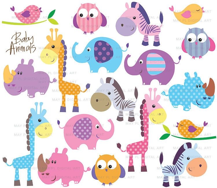 Safari Jungle Animals Clipart Cute Baby Zoo Animals Includes Etsy Besplatnaya Grafika Detenyshi Zhivotnyh Detskie Applikacii