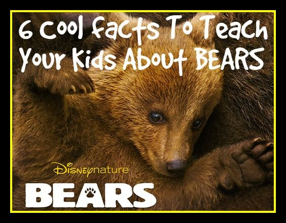 6 Cool Brown Bear Facts - Inspired by Disneynature's BEARS ...