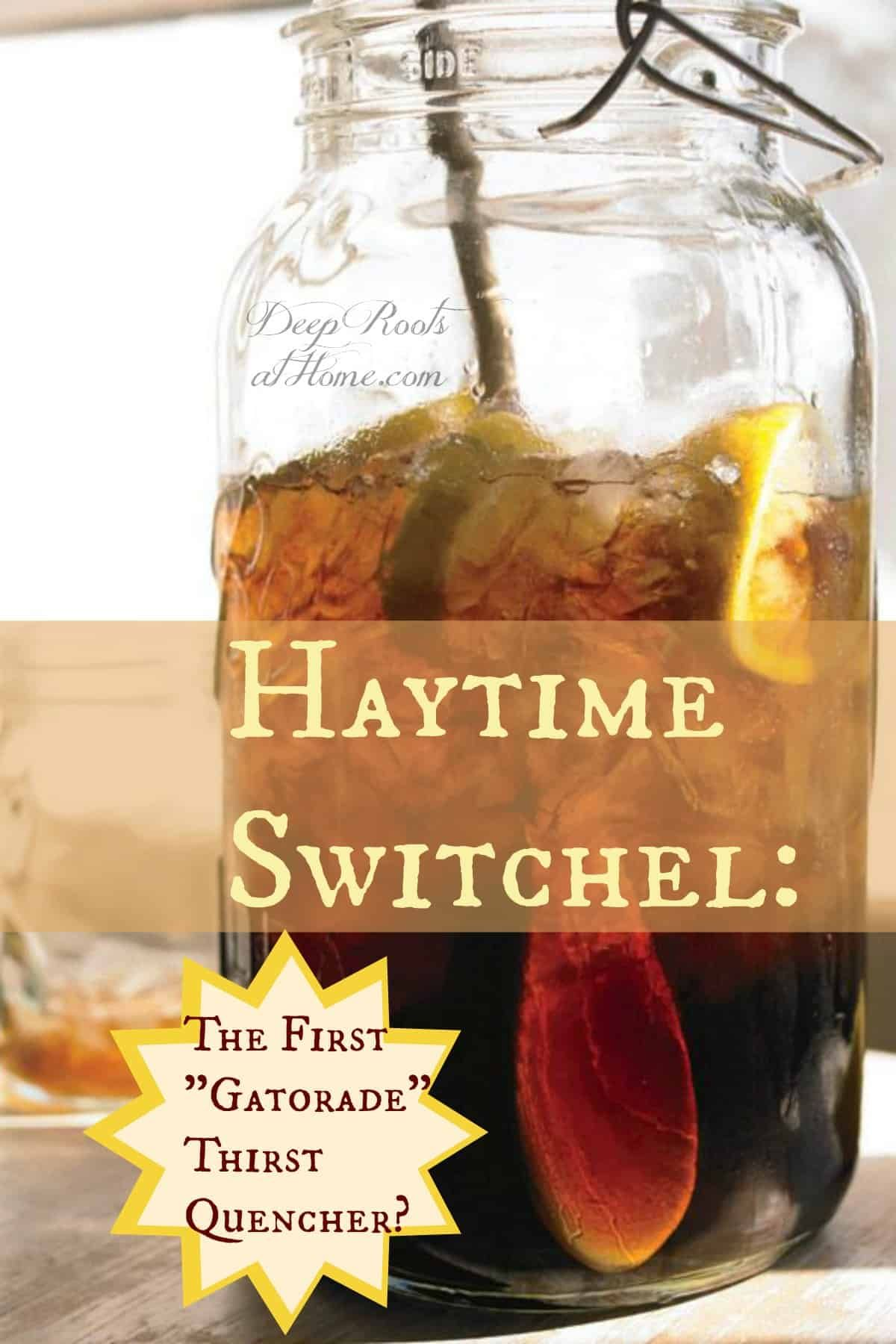 Haytime Switchel: The First 'Gatorade' Thirst Quencher? Perfect for keeping hydrated! #healthy #heal...