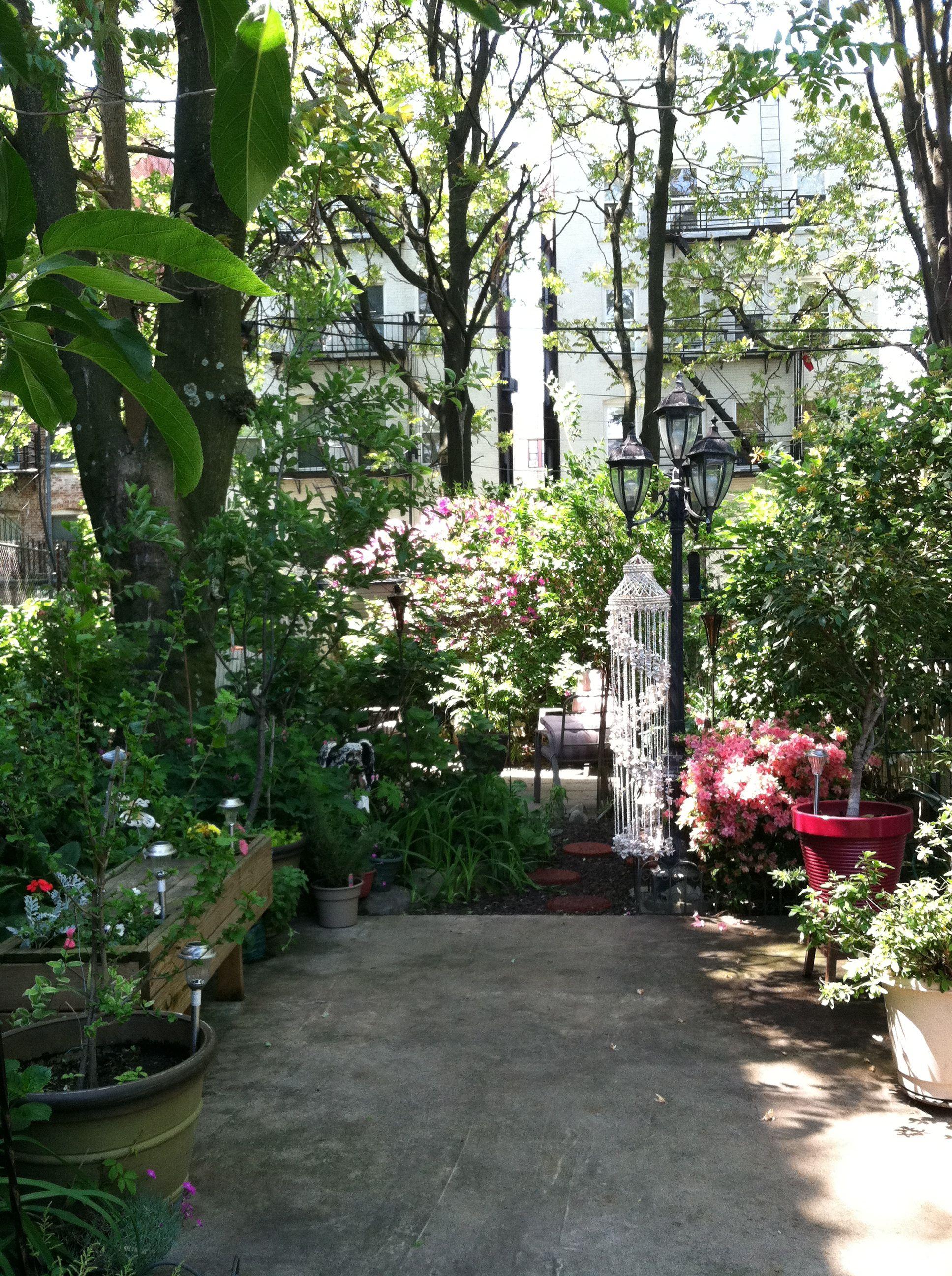 Secret Garden In Jersey City Jersey City Secret Garden City