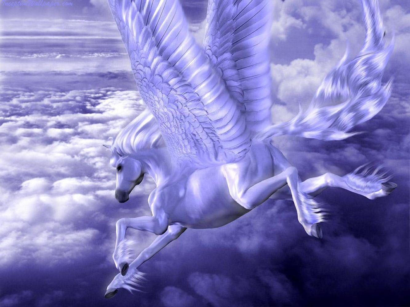 Cool Wallpaper Horse Unicorn - d57f645141c7cf826c88a8ce2f15974a  Snapshot_854848.jpg
