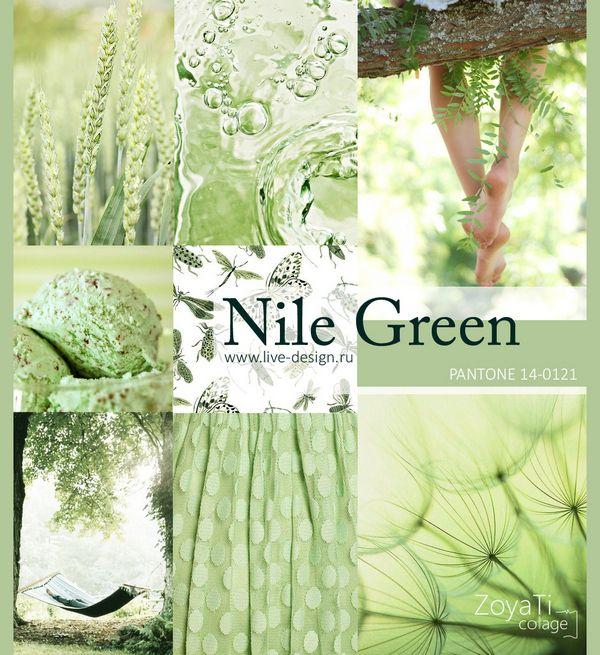 Модный цвет Pantone 2018 Nile Green Коллаж от Зои Ти Color Trends