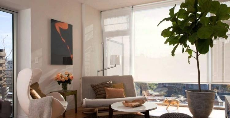 Feng Shui Wohnzimmer Einrichten Couch Klein Egg Pflanze Couchtisch