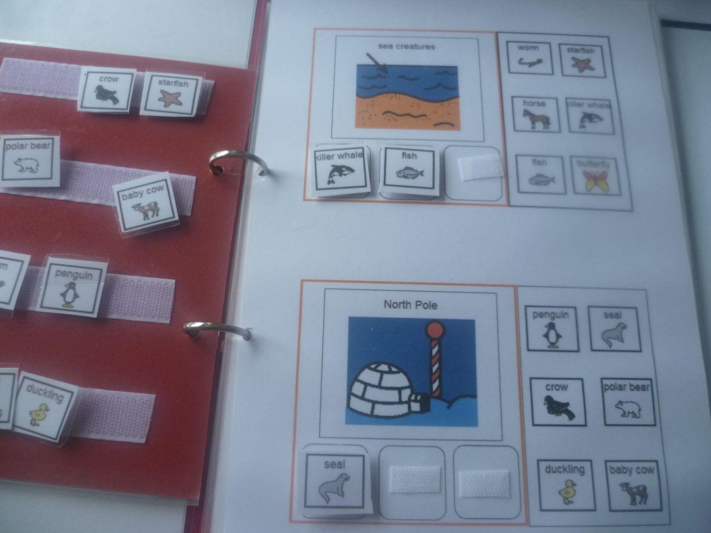 Autism Literacy Sorting Animal Categories File