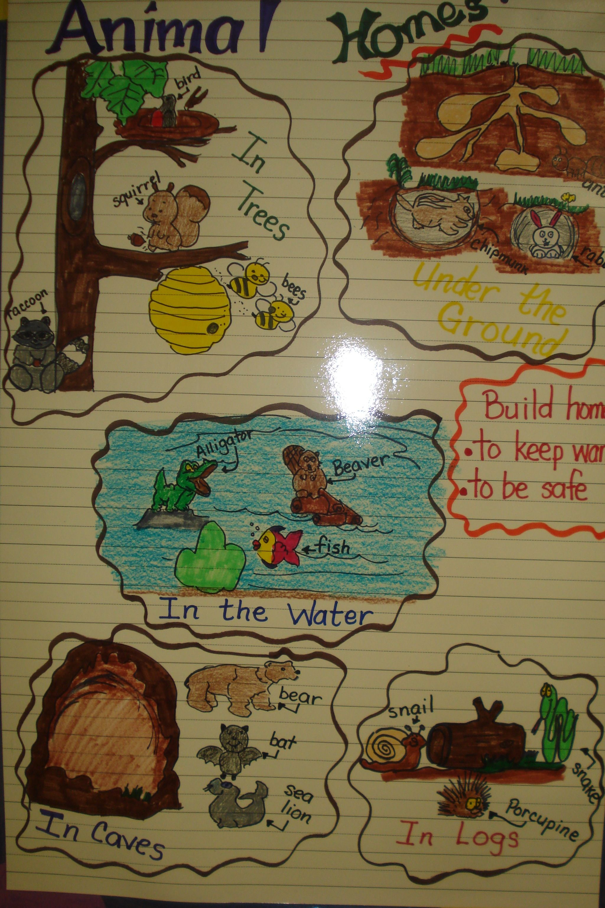 Animal Homes Chart At Thebilingualcafe Com Created By Hildelisa Diaz Animals And Their Homes Animal Lessons Art Wall Kids
