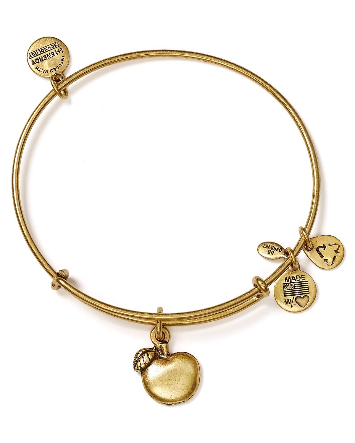 Alex And Ani Abundance Le Bangle Charms Bracelets