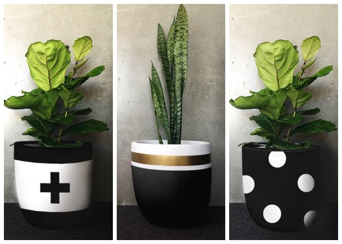 The revival of indoor plants is more than just improving indoor air quality. Design Twins Indoor Pots