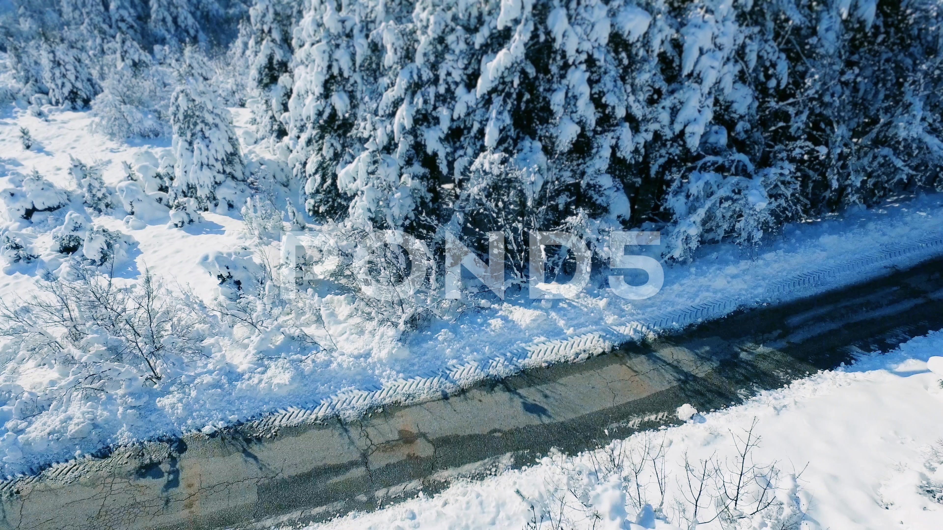 Aerial Snow Covered Trees Drone Footage Landscape Winter Nature Beautiful Europe Stock Footage Ad Trees Dr Winter Landscape Winter Nature Snow Covered Trees
