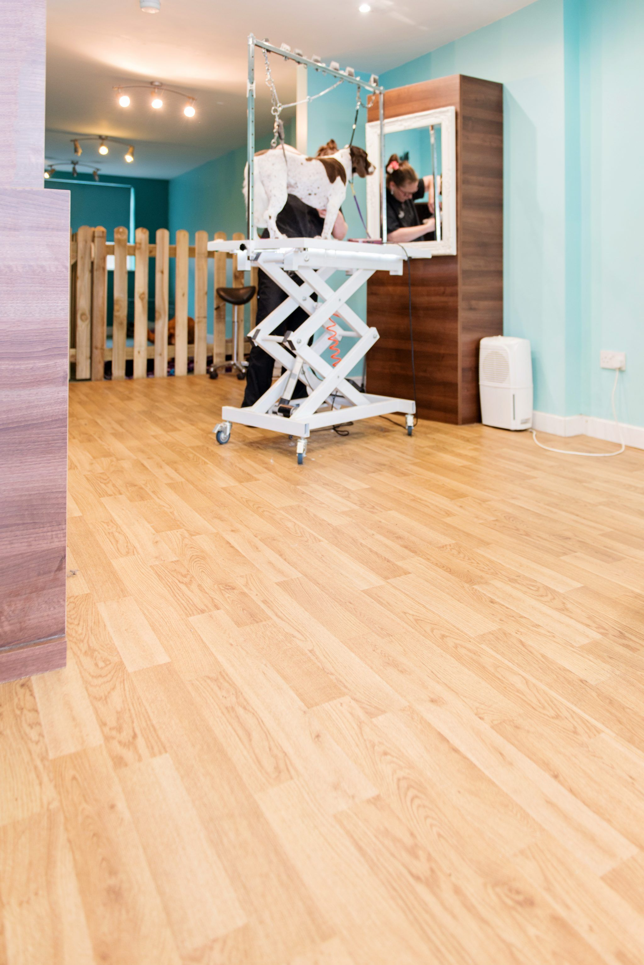 Polyflor's Forest fx is perfect for paws at dog grooming