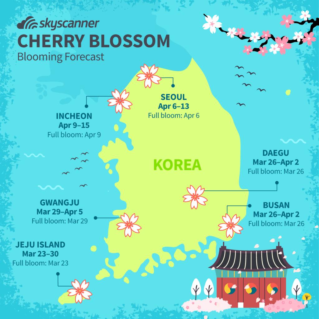 Pin By Talisa Vasquez On Soko Seoul Korea Korean Lessons