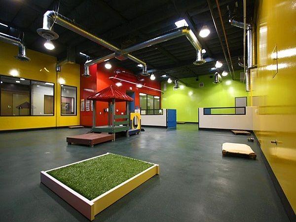 Canine Flooring Rubber Flooring Racquetball Court Construction Installation Dog Kennel Flooring Dog Daycare Flooring Dog Daycare