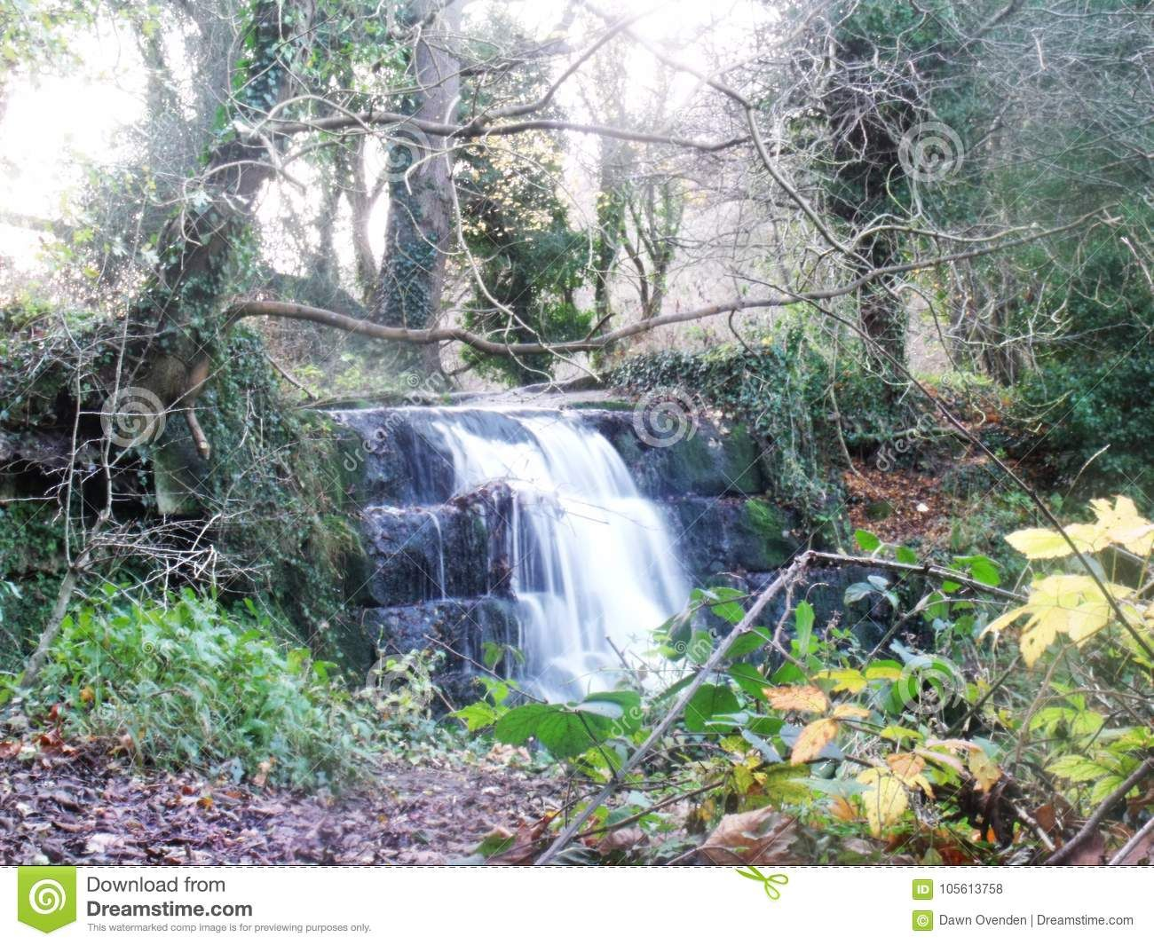 Photo About Small Man Made Waterfall Surrounded By Trees And Fallen Leaves Roach Abbey