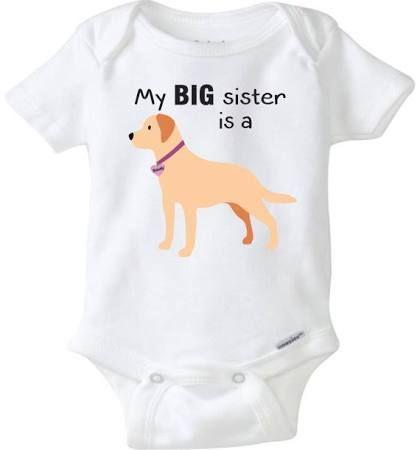 Labrador Onesie Google Search Outfits Pinterest Labradors