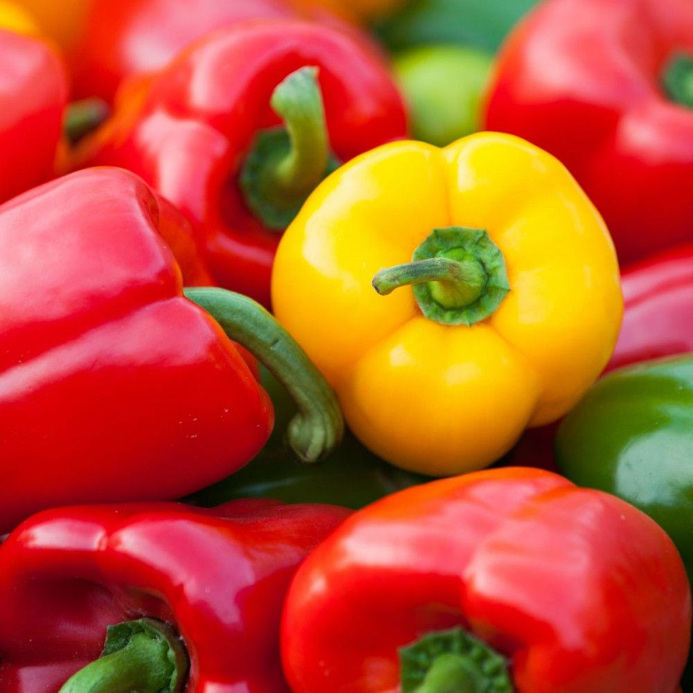 Peppers Stuffed Peppers Growing Peppers Growing Vegetables 640 x 480