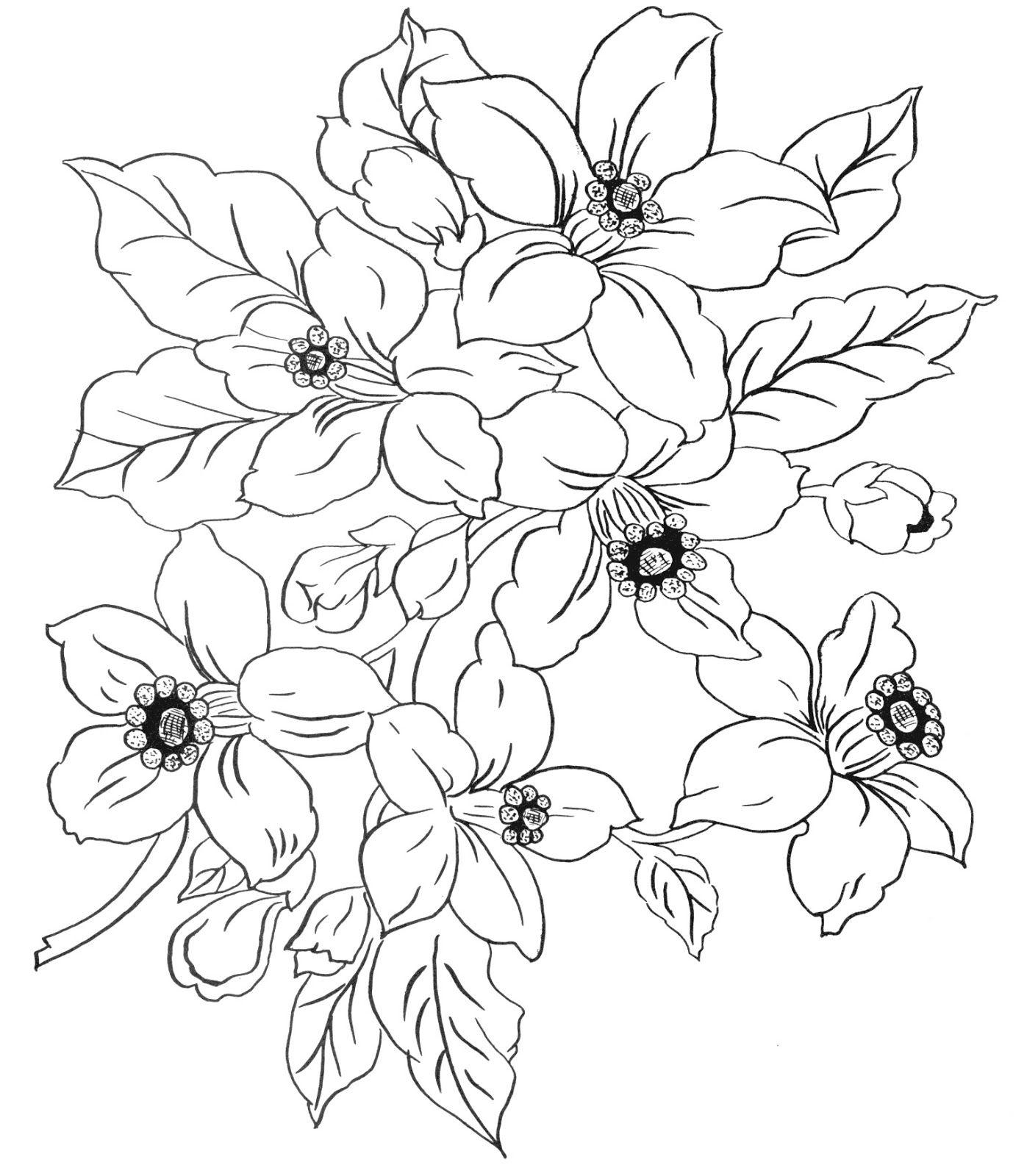 цветочные композиции картинки карандашом вскоре решил