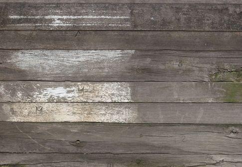 Free Wood Textures   Wood Textures   Pinterest   Free wood texture ...
