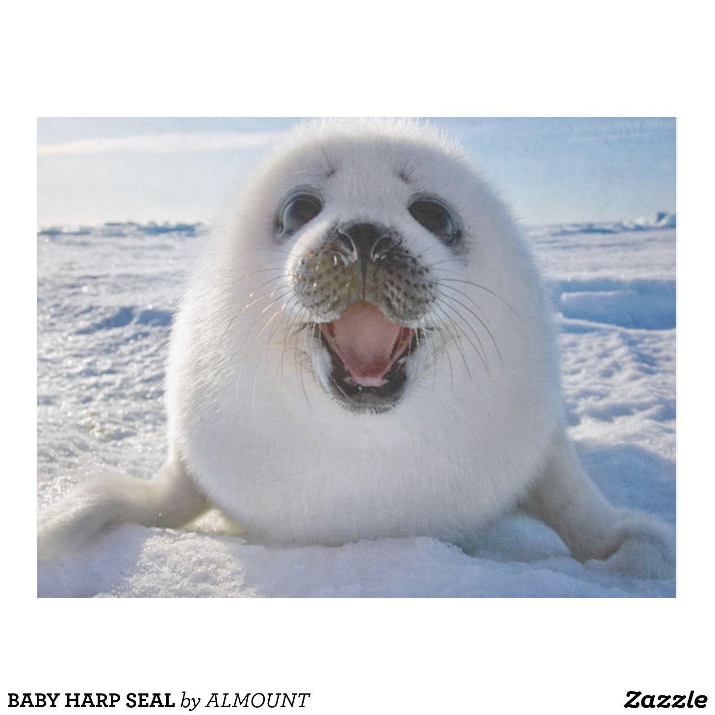 Custom Throw Blanket Baby Harp Seal Fleece Blanket