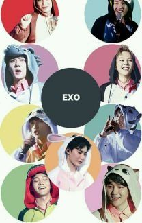 EXO FACTS❤❤❤