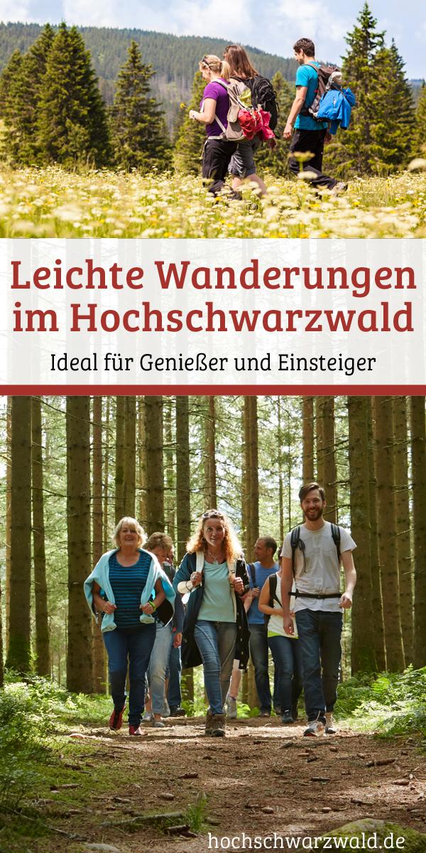 Leichte Wandertouren im Schwarzwald | Wanderrouten für Anfänger #wanderlust