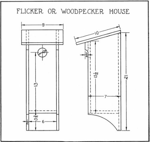 flicker/woodpecker house (research for new work) | in the garden
