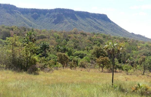 Parque Nacional Nascentes do Parnaíba, (Bahia, Piauí, Tocantins, Maranhão)