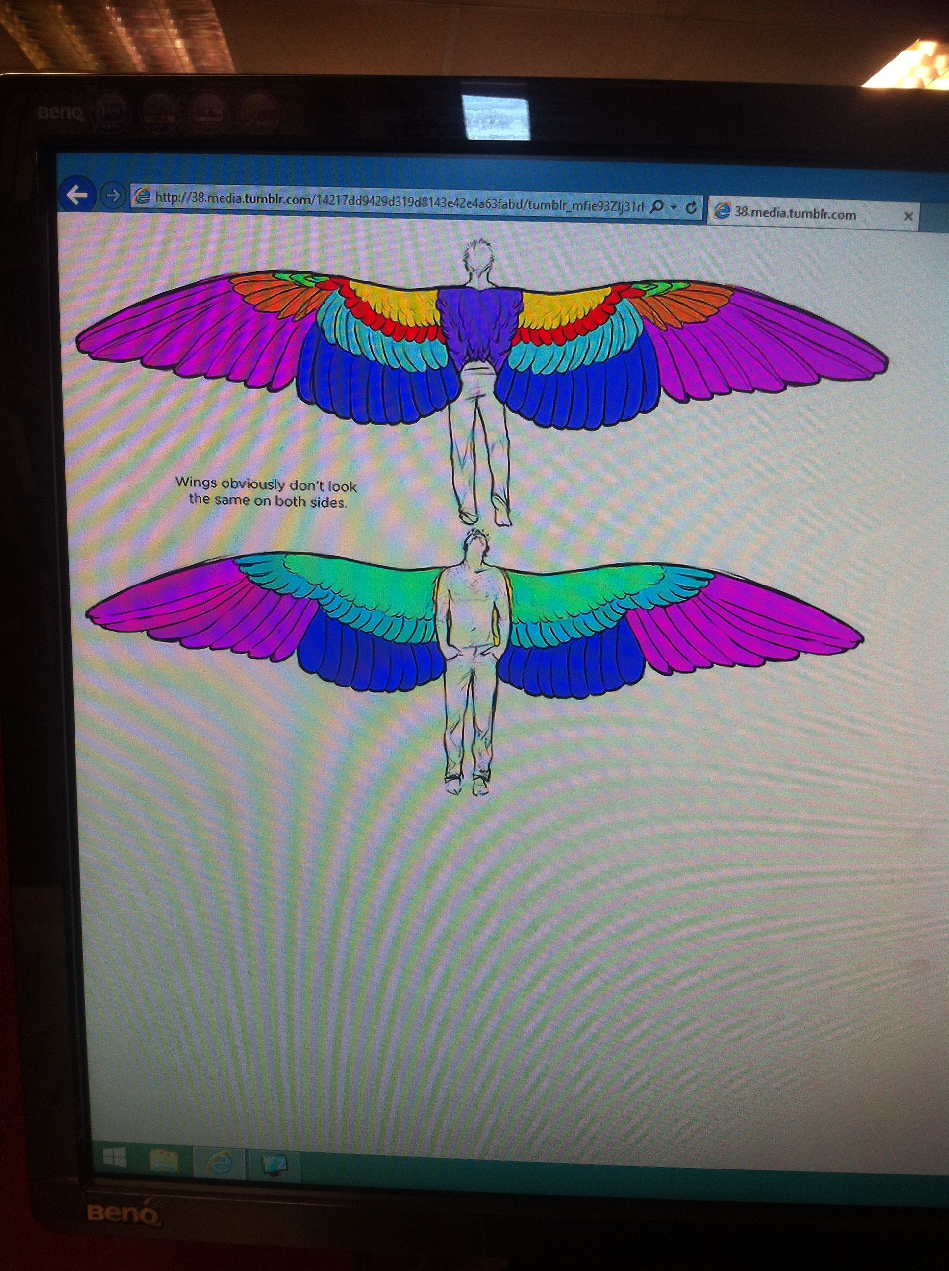 Anatomy of wings on a human. Part 2. (wing span) 22nd of September ...