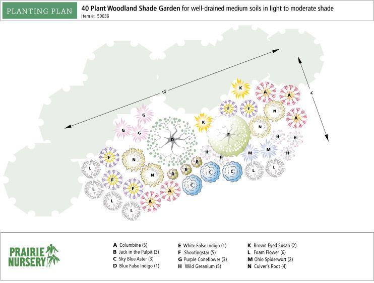 Prairie Nursery : Pre-Planned Gardens : 40 Plant Woodland Semi
