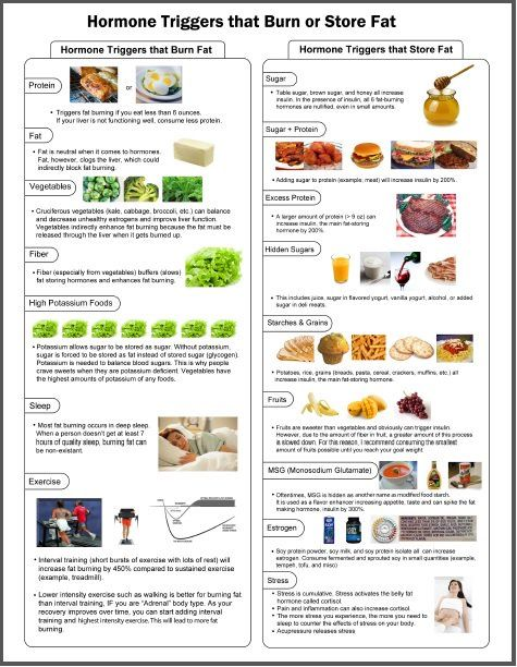Fat Burning Foods Chart   Weight Lose    Fat Burning