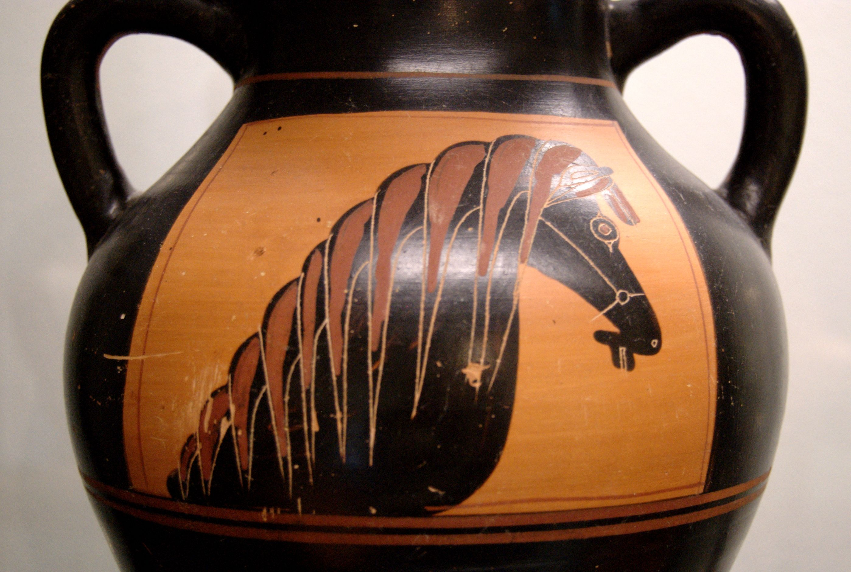 Image result for ancient greek horse picture