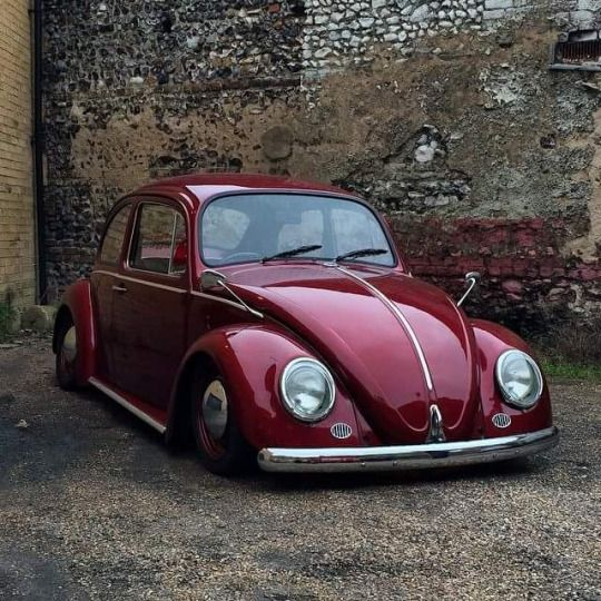 Vw Beetle Classic Car: Detroit Old Volks.