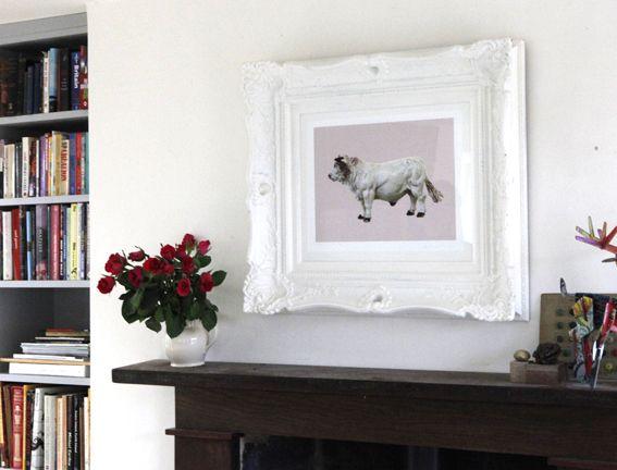 *Prize Bullock* Print on somerset velvet watercolour paper