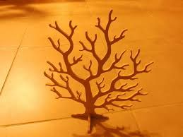 """Résultat de recherche d'images pour """"arbre marin"""""""