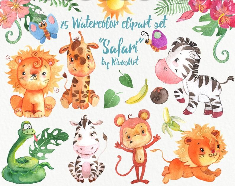 African Animals Png Safari Clipart Watercolor Jungle Wild Etsy Wild Baby Shower Clip Art African Animals
