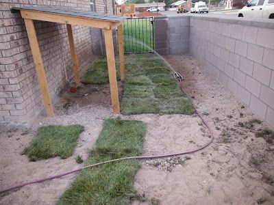 Dog Shade But Better Ground For Resting And Add Misting System Shade For Dogs Dog Backyard Dog Yard