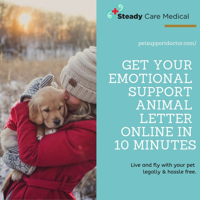 You can register with us and get your Emotional Support