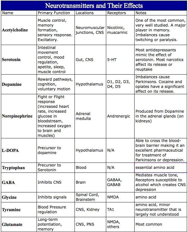 neurotransmitter chart ap psychology - Google Search EPPP