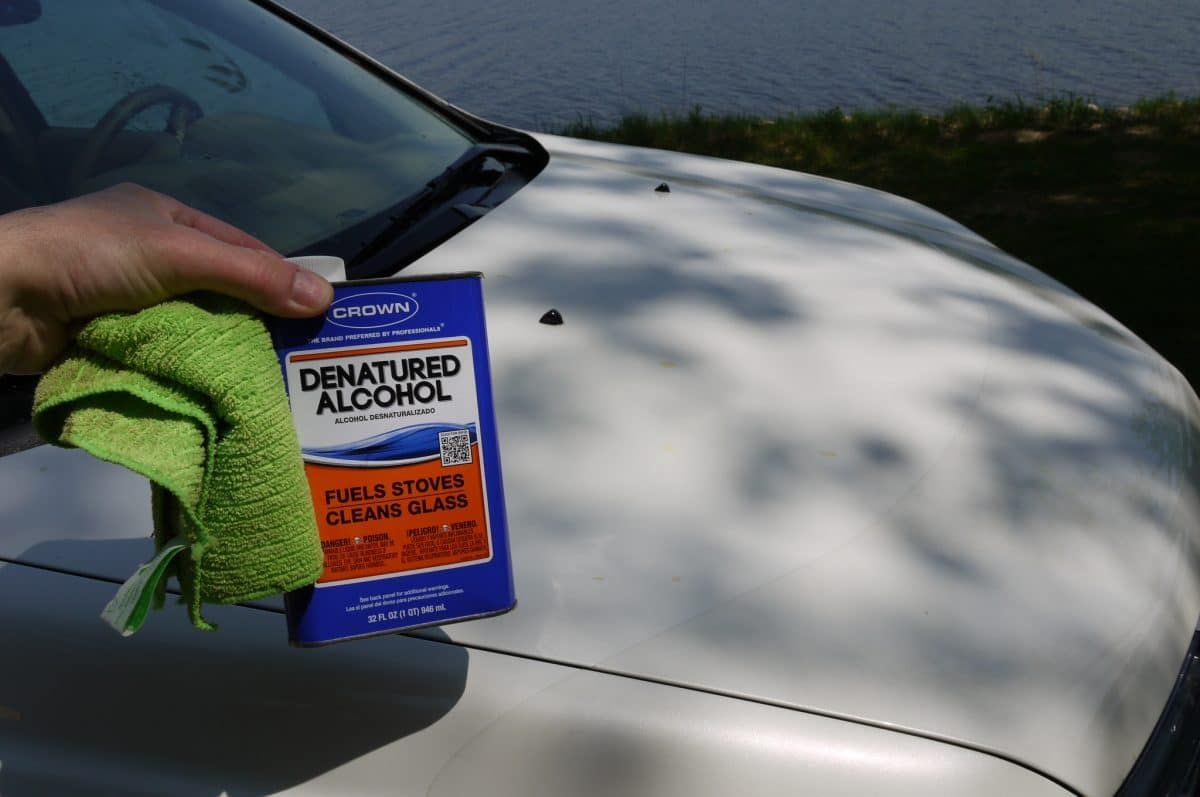 How to Remove Tree Sap From Car Remove tree sap, Tree