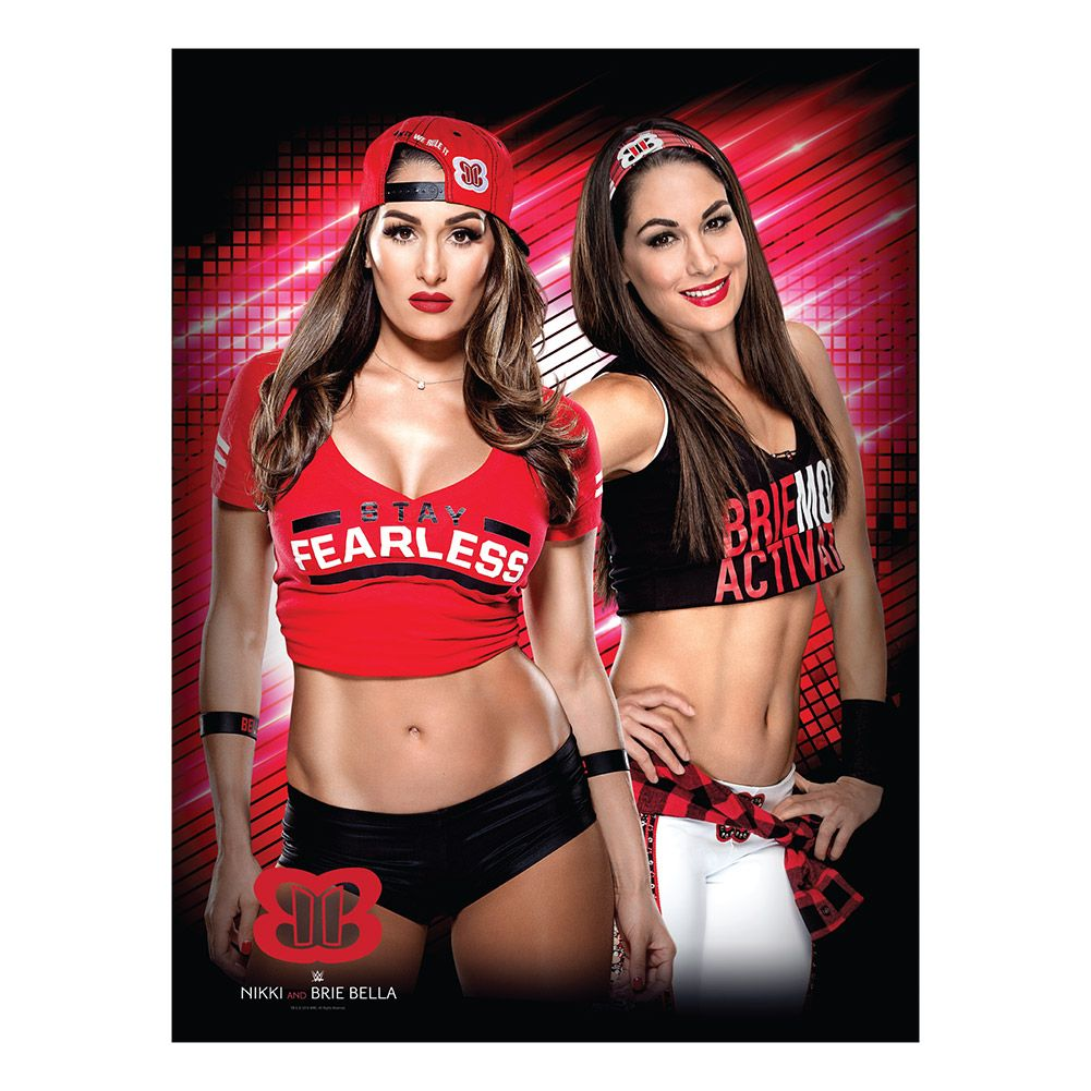 Communication on this topic: OMG, the Bella Twins Just Challenged the , omg-the-bella-twins-just-challenged-the/