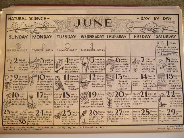 Year Calendar Look : Nature calendar june activities and