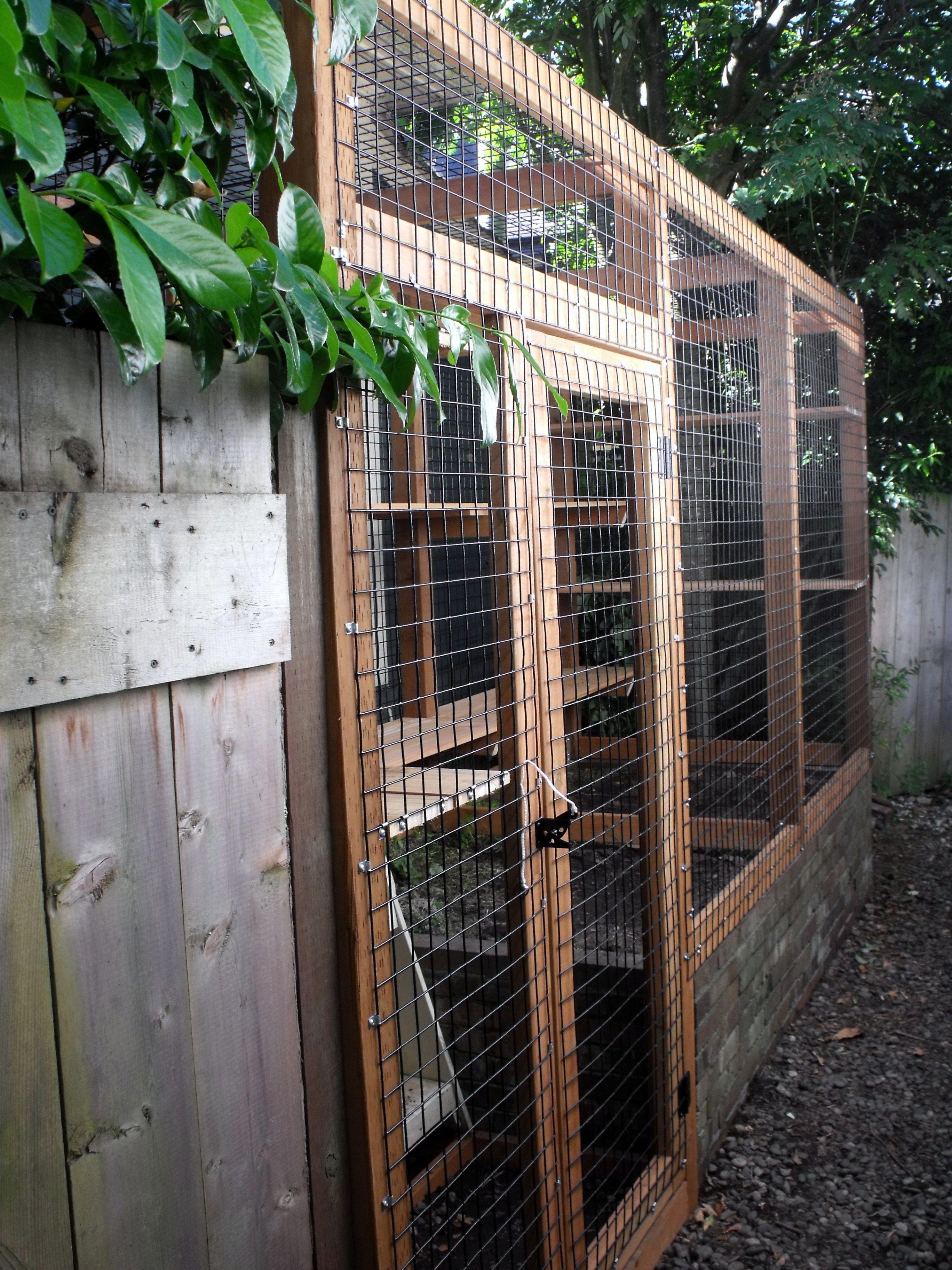 Outdoor Cat Enclosure Beautiful World Living Environments Www.abeautifulwor.