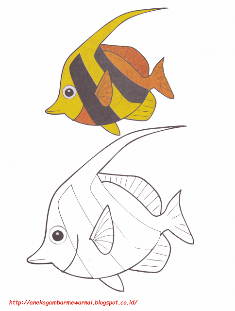 Gambar Mewarnai Ikan Nemo : gambar, mewarnai, Aneka, Gambar, Mewarnai, Bendera, Untuk, Bendera., Kartu, Bayi,, Ilustrasi, Hewan,, Hewan
