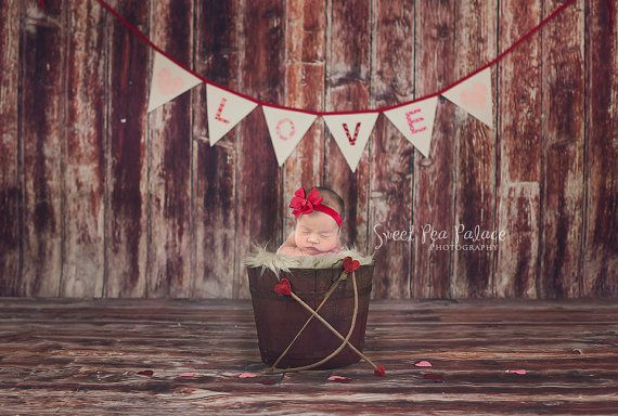 Newborn Baby Child Photography Prop Digital Backdrop for Photographers - Valentine's Day LOVE