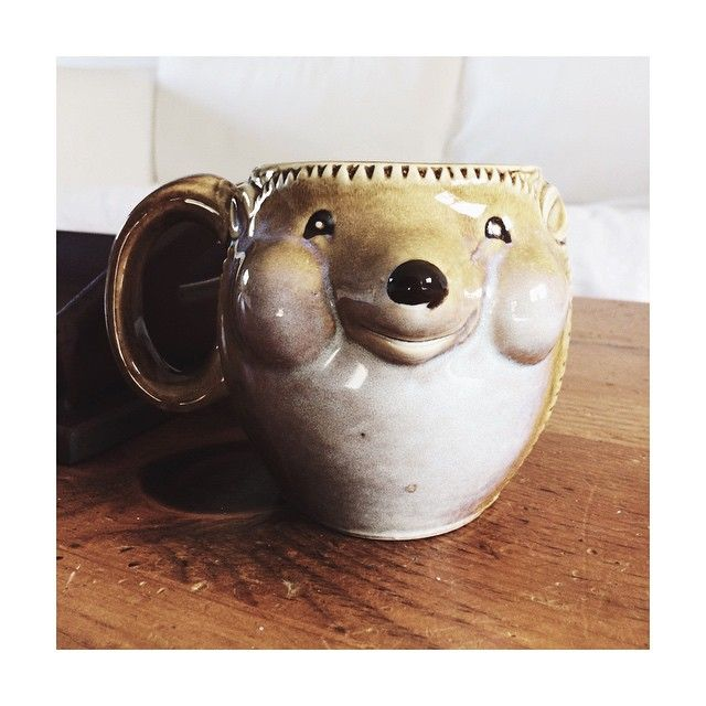 the most magical little hedgehog. #Padgram