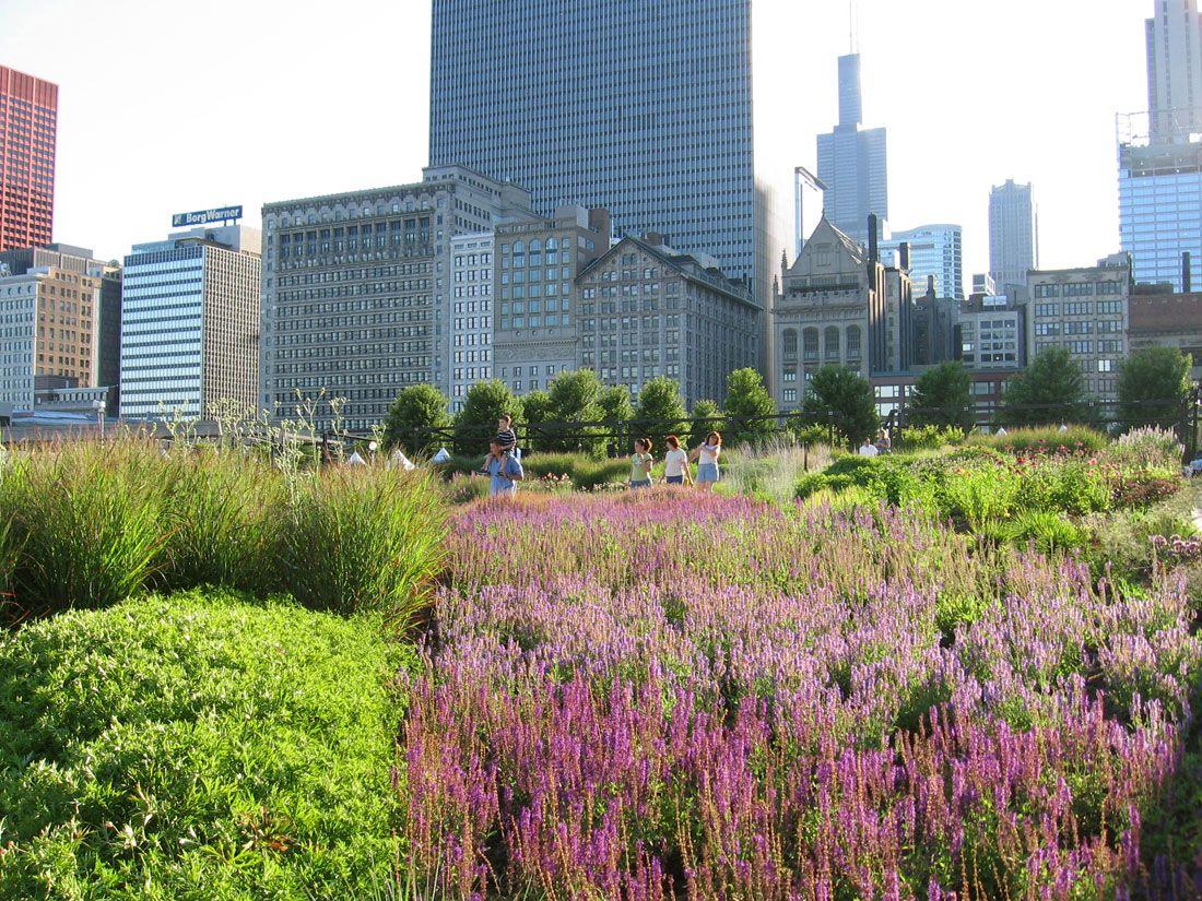 Lurie children 39 s hospital garden chicago piet oudolf for Lurie garden planting plan